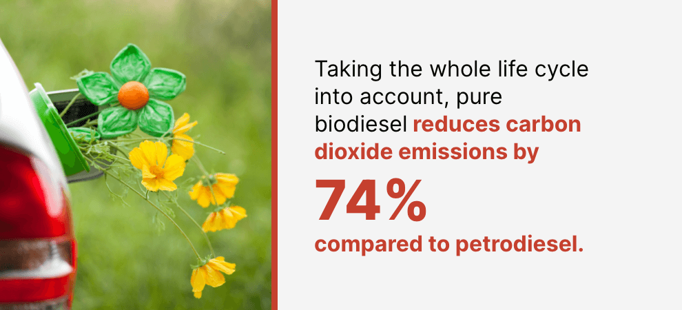 Taking the whole life cycle into account, pure biodiesel reduces carbon dioxide emissions by 74% compared to petrodiesel